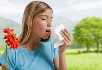Il rimedio per le allergie: il trattamento e farmaci modi popolari.