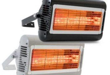 Quale riscaldatore è meglio? Scegliere il giusto!