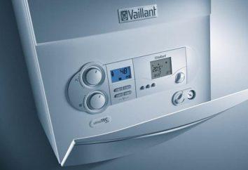 Combustible para la caldera: características, tipos, características y requisitos