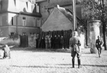 Lokotskaya Republic – eine umstrittene Seite des Großen Krieges