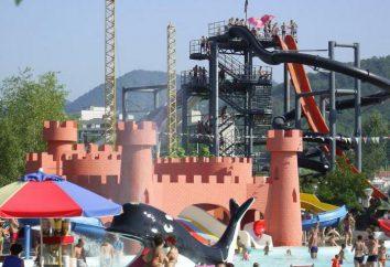 """Parc aquatique """"Dolphin"""" en Nebug: attractions, prix, avis"""
