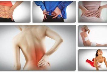 Il mal di schiena nella regione lombare. Trattamento di raffreddore, lombalgia, ernia del disco