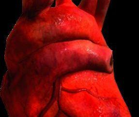 Où trouver le cœur du Daedra dans « Skyrim » et ce qu'il faut faire?
