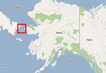 Em que ano eles venderam o Alasca para a América? Alasca: história