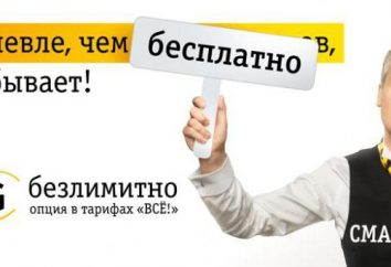 """""""Beeline"""" -Internet de roaming na Rússia e no exterior. Como se conectar à Internet em roaming """"Beeline""""?"""