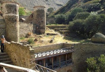 Monastero David Gareji Georgia: foto e indirizzo