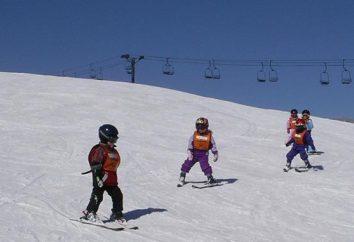 Como ensinar uma criança a esquiar. técnicas básicas