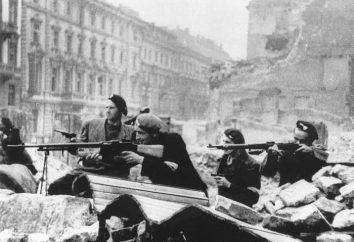 Revolta de Varsóvia. A Segunda Guerra Mundial. história