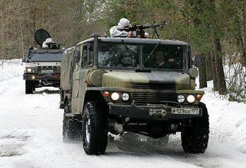 76 Guardas Air Assault Division: história, composição e Fatos interessantes