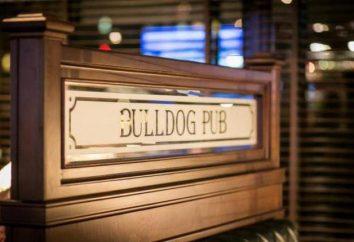 Murmansk, Bulldog Pub: Indirizzo, menu, la consegna e il feedback