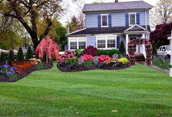 Un letto di fiori nei pressi della casa: progettare le proprie mani