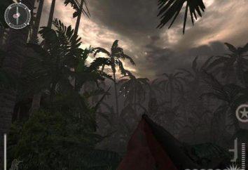 Medaglia Computer game of Honor: Pacific Assault: passaggio, codici recensione