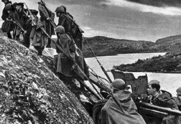 La liberazione di Stalingrado. Medaglia per la liberazione di Stalingrado