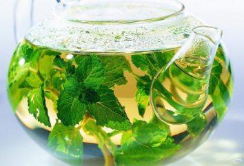 Tee mit Minze: nützlichen Eigenschaften und Gegenanzeigen