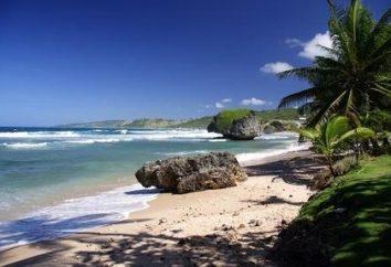Barbados exóticas. Isla Carib-perla
