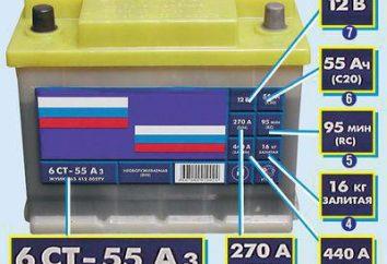 Batteriekennzeichnung: Merkmal und Bezeichnung