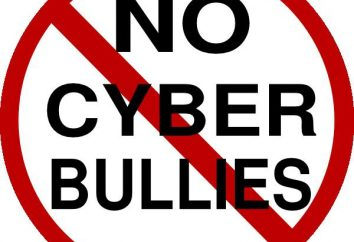 Was ist kiberbulling? Internet Trolling und kiberbulling
