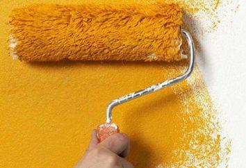 Tipos de pinturas para suelos y paredes. Tipos de revestimientos en polvo