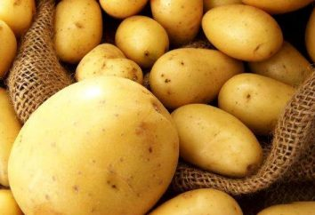 Ziemniaki: uszkodzenia korzeni i korzyści na różnych sposobów gotowania