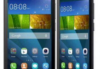 Telefon Huawei Y5C: przegląd modelu