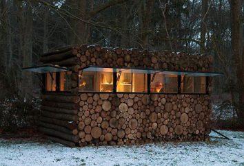 Auto-instalação: janela de plástico em uma casa de madeira