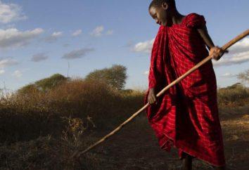 A população da África do Sul. A composição étnica dos povos indígenas da África do Sul