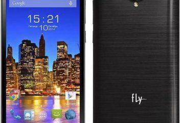 Teléfono Fly Tech EVO 4: Características y opiniones