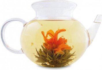 chá obrigado – tratar para estetas