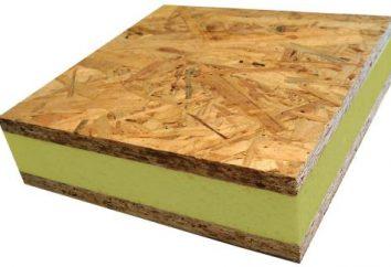 SIP-Panel – strapazierfähiges, leichtes Material für Wände