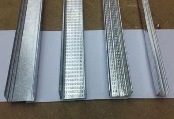 Fixadores Drywall: quadros e tipos de parafusos auxiliares