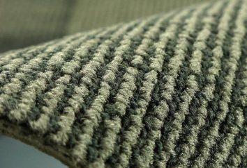 Teppich aus Polypropylen: Bewertungen, Merkmale, Vor- und Nachteile. Wie ein Teppich wählen