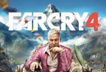 """Läuft nicht """"Far Cry 4"""", einen schwarzen Bildschirm. Laufen Sie nicht Far Cry 4: Addressing"""