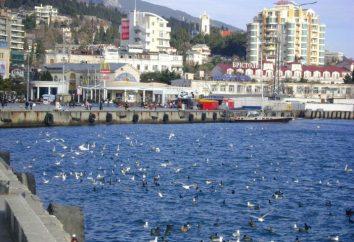 """Was in Jalta zu sehen? Yalta: Ausflüge. Yalta: """"Schwalbennest"""""""
