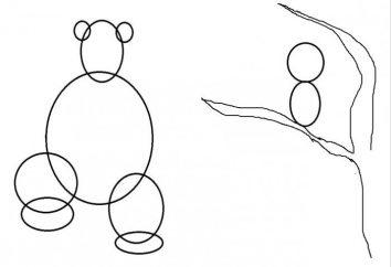 """master class """"Jak rysować Masza i Niedźwiedź"""""""