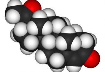 La progesterona – una hormona del embarazo