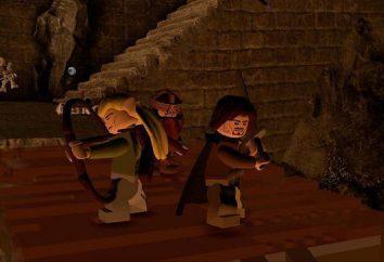 """""""Lego: Il Signore degli Anelli"""", il passaggio: una guida completa nel dettaglio"""