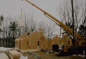 Technologie de la construction de maisons cadre du panneau