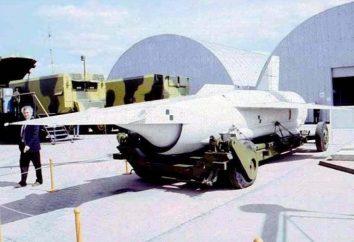 mísseis de cruzeiro, a Rússia e os EUA