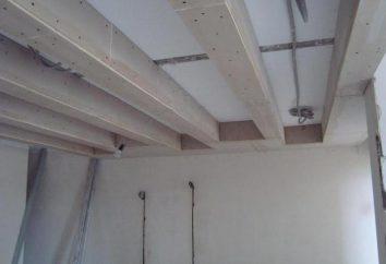 Ceramsite beton panel ścienny: Charakterystyka