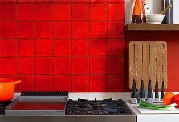 carrelage de carreaux pour la cuisine: choisir et acheter le droit
