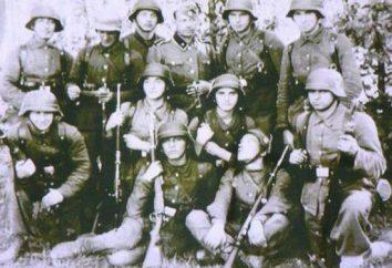 """Divisione SS """"Galizia"""": la storia"""