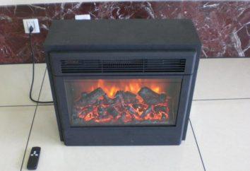lareira levantou – o calor eo conforto da sua casa