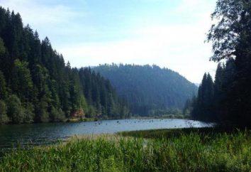 Red Lake, Romania. Onde está o lago? Lendas e especialmente o Red Lake