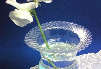 Como fazer um vaso de uma garrafa de plástico, ou algo do lixo-arte