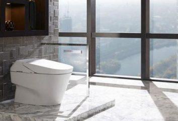 WC z bezpośredniego wystawienia: Jak zamontować?