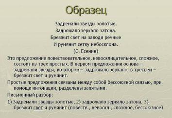 Exemple des phrases déclaratives et leurs caractéristiques syntaxiques