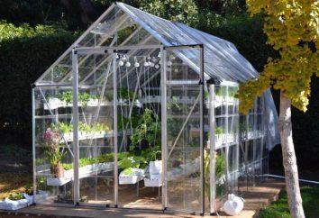 Jakie są system hydroponicznych? Opis głównych typów systemów hydroponicznych. System Hydroponika własnymi rękami