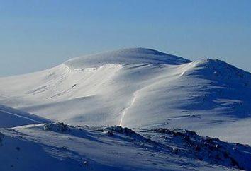 Która góra w Australii jest najwyższa? Najwyższa góra w Australii