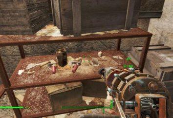 Fallout 4: Bolt (dove trovare, perché ne hai bisogno)