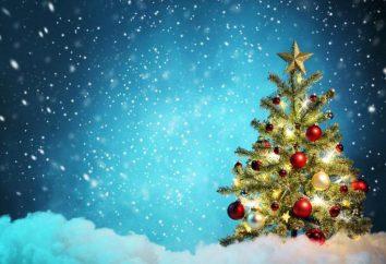 divinatoire Noël. prédiction comique qui affecte la vie